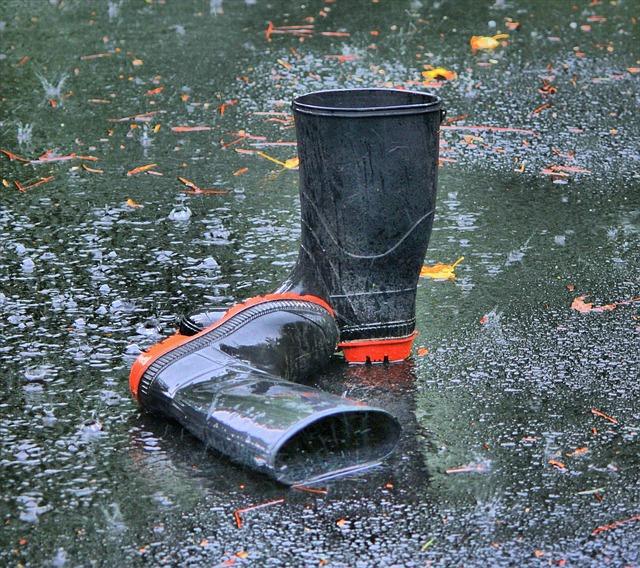 נזקי הצפה
